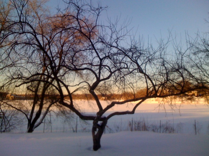 Image result for cold winter days